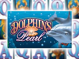 logo Dolphin's Pearl